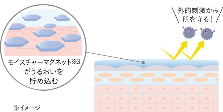 モイスチャーマグネットがうるおいを貯め込み、外的刺激から肌を守る